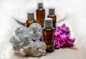 Essential Oil For Bed Bugs