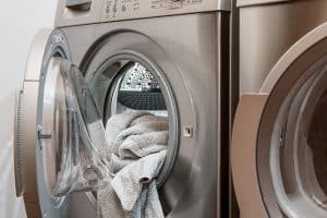 Does Dryer Kill Bed Bugs