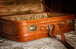 Bed bugs on the Suitcase